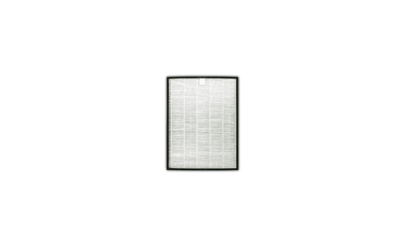 FZ-C100HFE (HEPA)